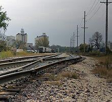 Railroad by Bevin Allison