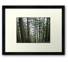 Grouse Grind Framed Print