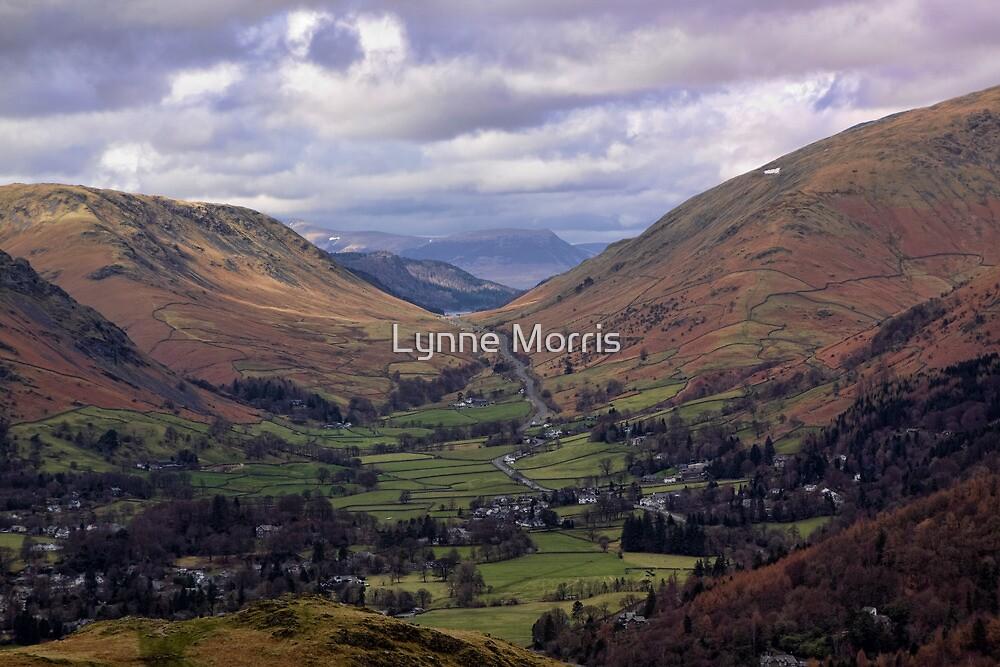 A Road Runs Through It by Lynne Morris