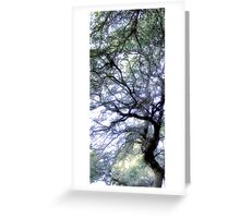 Composition With Trees and Branches – March 30, 2010 Greeting Card