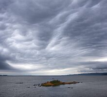 Tiny Island - Macquarie Harbour Tasmania by Hans Kawitzki