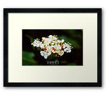 ~Natures Bouquet~ Framed Print