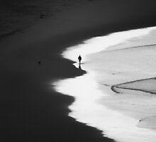 Walking The Tideline by Ron C. Moss