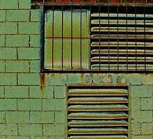 ...the grate wall... by Lynne Prestebak