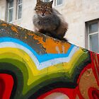 Urban Kitty by Hans van 't Woud