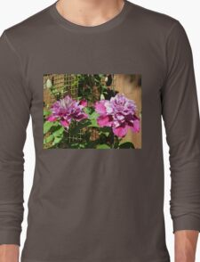 Sunkissed Clematis Blossoms Long Sleeve T-Shirt