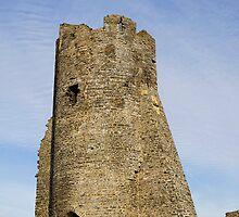 Aberystwyth Castle, Wales, UK by buttonpresser
