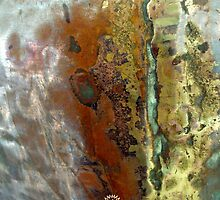 COPPER-SCAPE by laureen warrington