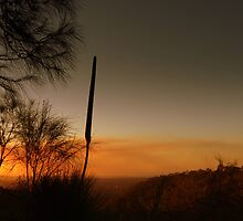 Morialta- Sunset Burn Off by Ben Loveday
