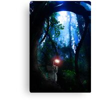 Meeting the Elf Lord Canvas Print