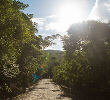 Road to San Roque by Rashid Belt