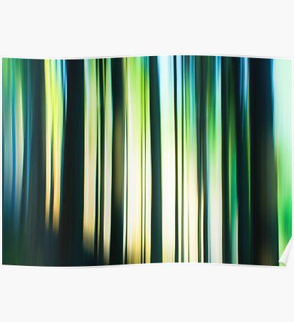 forest impressions I Poster