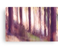 forest impressions II Canvas Print