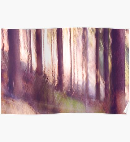 forest impressions II Poster