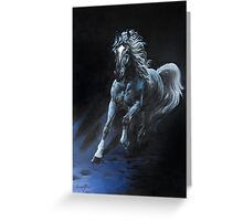 """White Stallion"" Oil on Canvas Greeting Card"