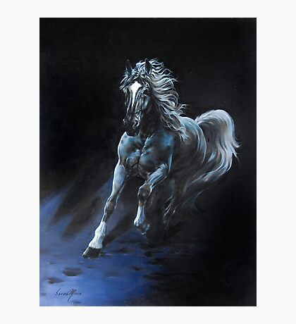 """White Stallion"" Oil on Canvas Photographic Print"