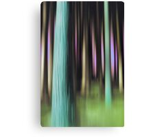 forest impressions IV Canvas Print