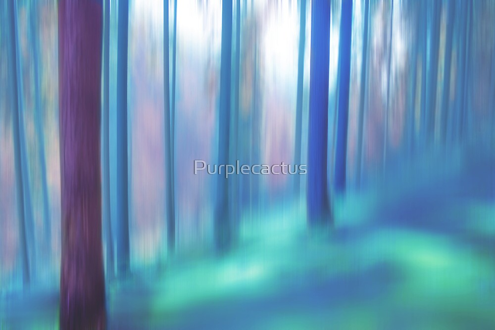 forest impressions V by Purplecactus