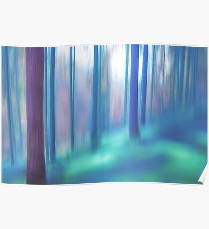 forest impressions V Poster