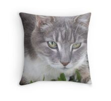 Trixy - In Loving Memory Throw Pillow