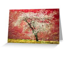The First Blossoms Greeting Card