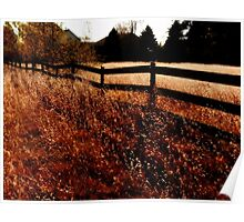 Farm Fence in Fall Poster