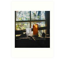 The Toolshed - Peacham, Vermont Art Print