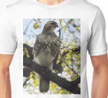 Red Tail Hawk Statue Unisex T-Shirt