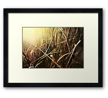 Fire Hazard Framed Print