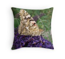 Painted Lady Butterfly on Buddleia Throw Pillow