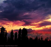 Cloudy Skies by rocamiadesign