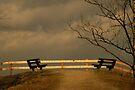 Romance on the Hill by Jo Nijenhuis