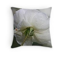 Back and White Throw Pillow