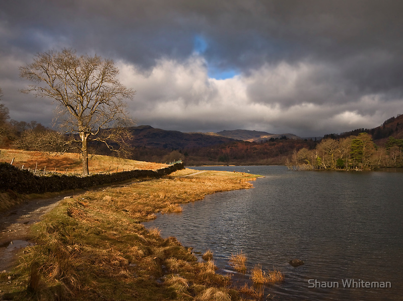 Morning light on Rydal water by Shaun Whiteman