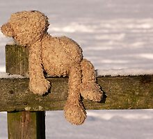 """Lost Teddy (""""All alone am I"""" revisited) by jesika"""