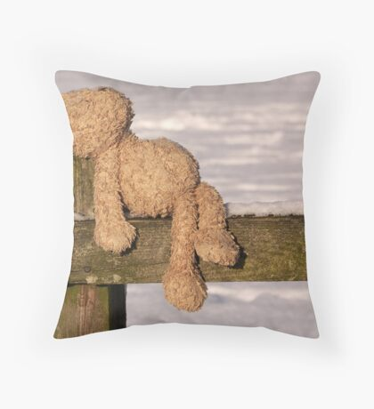 """Lost Teddy (""""All alone am I"""" revisited) Throw Pillow"""