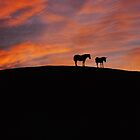 Two on a hill by pahit