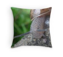 Slugs And Snails And Puppy Dog Tails......... Throw Pillow