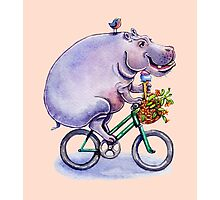 hippo on bicycle with icecream Photographic Print
