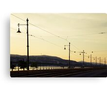 Tracks along the Danube Canvas Print