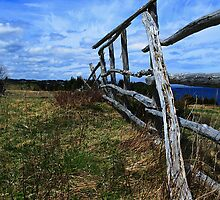 Old Fence by Brian Scott