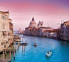 Veni Vici Venice by Dominic Kamp