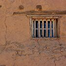 Remnants of the Past - Old Mesilla, New Mexico by Vicki Pelham