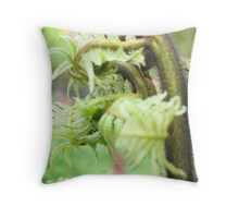 Hapu'u Fiddlehead Throw Pillow