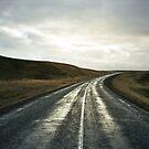 Lomo - Road nr. 1 by Thomas Spiessens
