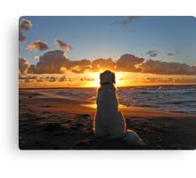 My Golden Retriever enjoys a beautiful sunset Canvas Print