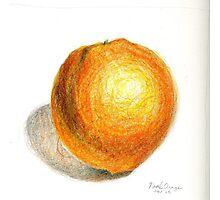 Navel Orange Photographic Print