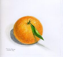 Navel Orange with Leaf by Lois Keller