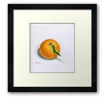 Navel Orange with Leaf Framed Print