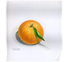 Navel Orange with Leaf Poster